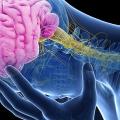 A Fisioterapia Precoce e a Recuperação Após Derrames Cerebrais.